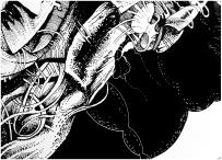 Apocalyptic Friends: Zeichnung auf Glas von Florian L. Arnold (Detail)